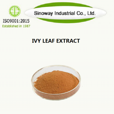 IVY LEAF EXTRACT поставщик -Sinoway